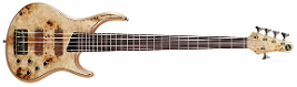 mtd_kz5_kingston_fretless_II